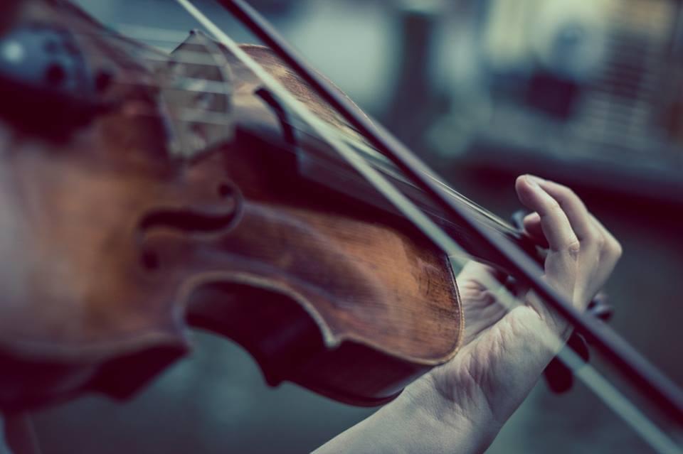 EO2015_violino