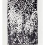 Ettore Fico, Viti selvatiche, 1971, litografia 700x500 mm, ed. 30 esemplari (€ 350 + spese di spedizione)