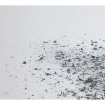 Masbedo, Errore bianco, 2010, stampa offset su carta 500x700 mm, ed. 99 esemplari (€ 99 + spese di spedizione)